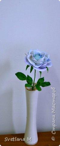Голубая роза из фоамирана фото 2