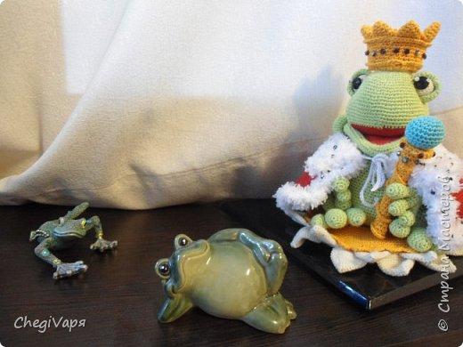 Если есть Царевна-лягушка, значит существует и Царь Лягух. Вот он - сидит на кувшинке со всеми подабающими регалиями и ждет свою прынцессу.  фото 4