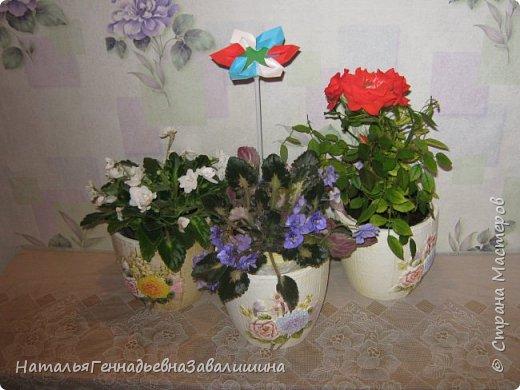 И цветы распустились к этому дню. Тебе, Россия, их я дарю.  Всех с праздником  от души поздравляю.