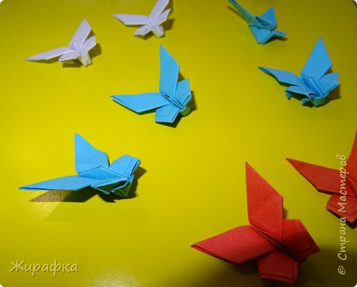 Бабочки... фото 2