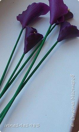 Думала, проще всего слепить каллы. А оказалось- не совсем. Сначала не правильно сделала прожилки, на некоторых цветах это видно. Лепесток нужно тоже сворачивать не абы как. Ну и сушка- повесишь не так, будет либо плоский, либо вытянутый сильно. Даже в таком простом цветке, состоящим из одного лепестка, есть свои тонкости. фото 10