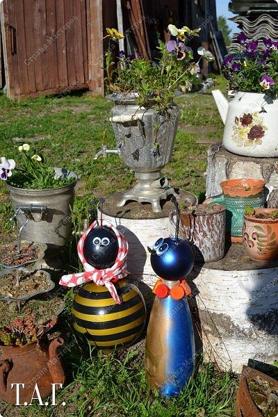 Познакомьтесь с новоселами моего участка.  Муха Цокотуха и бабушка Пчела. фото 5