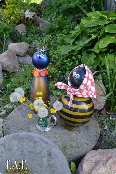 Познакомьтесь с новоселами моего участка.  Муха Цокотуха и бабушка Пчела. фото 15
