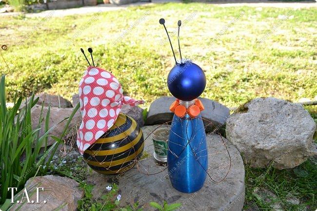 Познакомьтесь с новоселами моего участка.  Муха Цокотуха и бабушка Пчела. фото 9