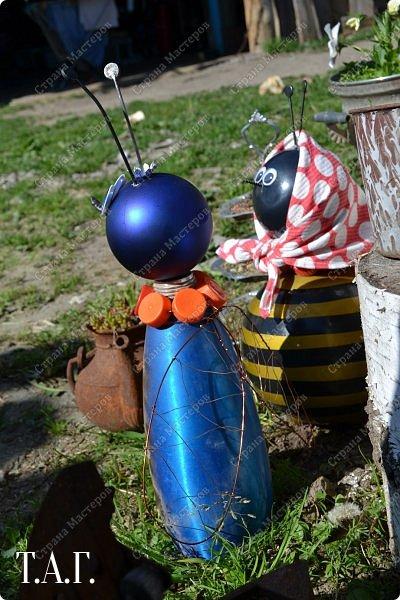 Познакомьтесь с новоселами моего участка.  Муха Цокотуха и бабушка Пчела. фото 8