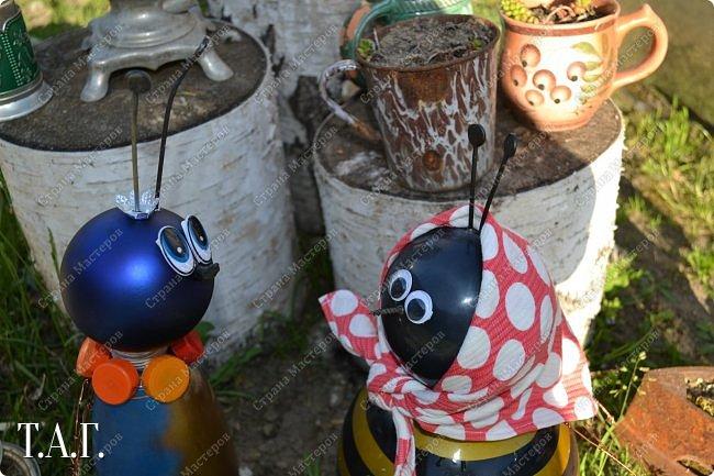 Познакомьтесь с новоселами моего участка.  Муха Цокотуха и бабушка Пчела. фото 16