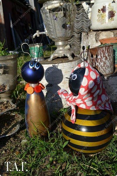 Познакомьтесь с новоселами моего участка.  Муха Цокотуха и бабушка Пчела. фото 1