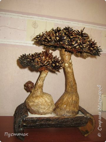 """Всех приветствую !!! Сегодня покажу деревья, которые полностью сделаны из природного материала. Конечно не считая алебастра....Над деревьями трудилась дочь...я была в подмастерьях...Развести алебастр...Покрыть лаком  ствол и шишки...Это я....А вот колдовала над """"шишечными пазлами"""" Дашка...и кропотливо склеивала их тоже она...И выбирала """"этажи"""" для будущих крон... Я, как обычно, делала несколько вариантов фотографий...Мало что получилось...Трудно передать весь объем и легкость первого дерева....а уж о втором и говорить не приходится....Оно брутальное...массивное...высокое...но снимки (а точнее я в роли фотографа) сделали его темным и совсем не похожим на себя...Девочки...честное слово...они такие красивые.... фото 33"""