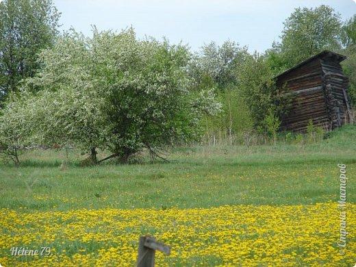 И говор вод, и тень дубров, И благовоние цветов; Какой душе не мило это?  (Е. Баратынский) фото 13