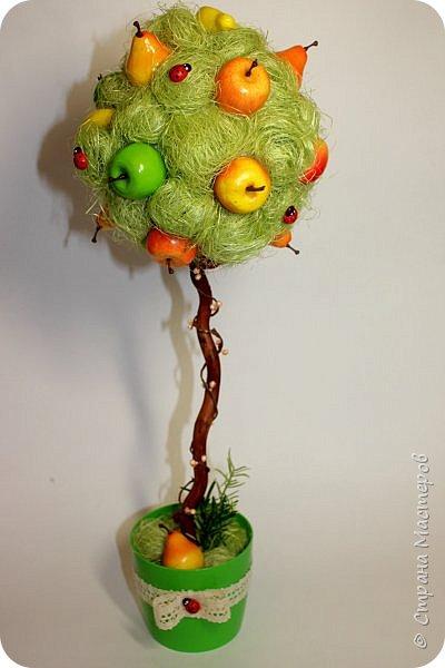 Очень яркий фруктовый топиарий) фото 2