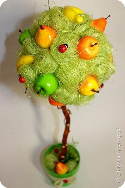 Очень яркий фруктовый топиарий) фото 1