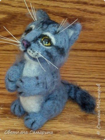 Здравствуйте, все!  Вот еще один котейка. Сделала в подарок коллеге на 8 марта. фото 3