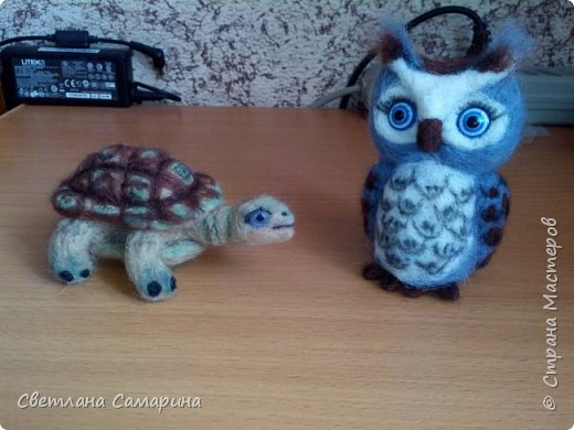 Совенок и черепаха фото 1