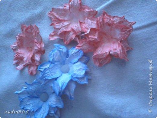 Всем привет!!! Хочу показать какие красивые цветочки у меня получились. Делала вот по этому мастер классу  http://stranamasterov.ru/node/321021  Рада всем кто заглянул, всем спасибо! фото 2