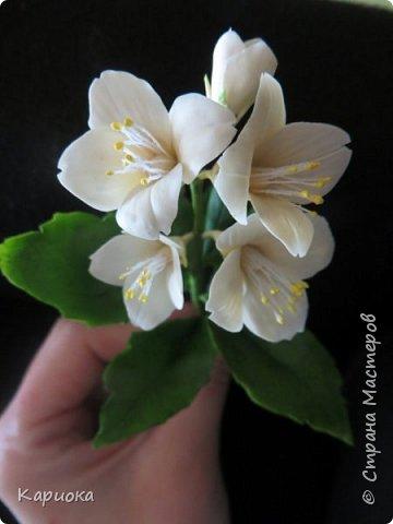 Здравствуйте жители СМ!  Недавно лепила жасмин из хф - и просто влюбилась в этот цветок! Вот что получилось. Решила сфоткать процесс создания цветочка - вдруг кому-то пригодится. фото 1