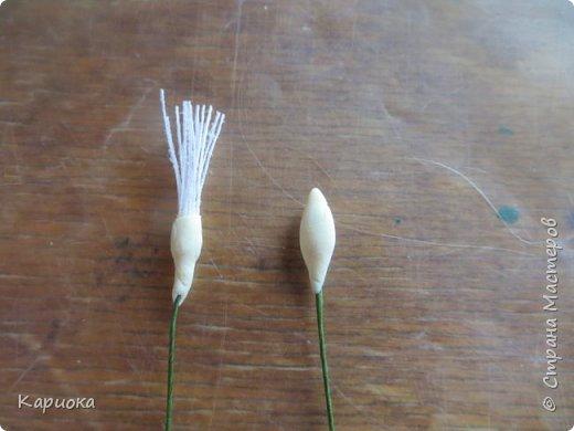 Здравствуйте жители СМ!  Недавно лепила жасмин из хф - и просто влюбилась в этот цветок! Вот что получилось. Решила сфоткать процесс создания цветочка - вдруг кому-то пригодится. фото 5
