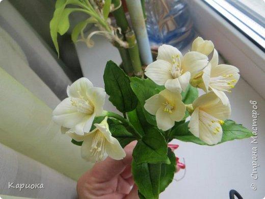Здравствуйте жители СМ!  Недавно лепила жасмин из хф - и просто влюбилась в этот цветок! Вот что получилось. Решила сфоткать процесс создания цветочка - вдруг кому-то пригодится. фото 27