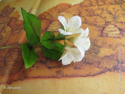 Здравствуйте жители СМ!  Недавно лепила жасмин из хф - и просто влюбилась в этот цветок! Вот что получилось. Решила сфоткать процесс создания цветочка - вдруг кому-то пригодится. фото 26