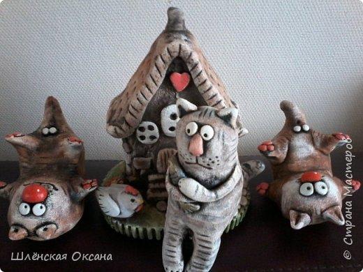 Кот Павлик шокирован этими безобразниками. фото 1