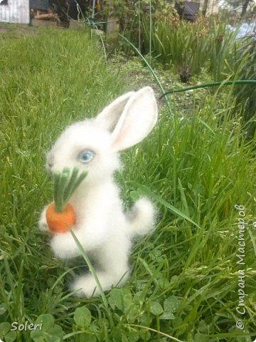 Зайка с морковкой фото 2