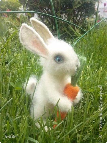 Зайка с морковкой фото 3