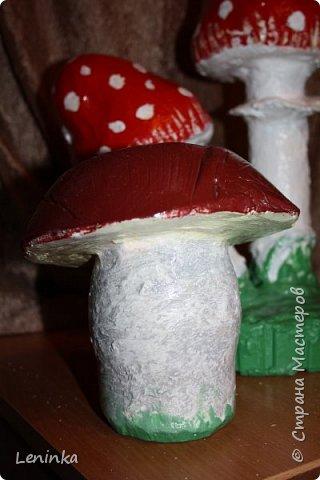 Вот такие грибочки у меня получились по мастер классу (http://samayamk.ru/podelki-iz-gipsa/sadovye-gribochki-iz-gipsa.html) я просто добавила улитку и листики которые слепила из пластики.  фото 8