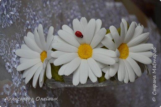 Привет жителям Страны Мастеров! С приходом лета на полянках распустились полевые цветочки среди них очень мне нравятся ромашки.  Жаль что из живых цветов нельзя сделать заколку или ободочек. Поэтому я сделала вот такие ромашечки из фоамирана. А на сколько реалистичными они получились судить только Вам!  фото 3