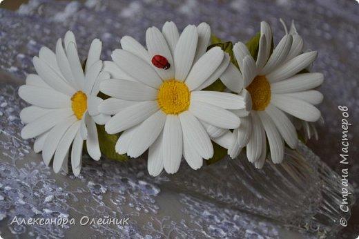 Привет жителям Страны Мастеров! С приходом лета на полянках распустились полевые цветочки среди них очень мне нравятся ромашки.  Жаль что из живых цветов нельзя сделать заколку или ободочек. Поэтому я сделала вот такие ромашечки из фоамирана. А на сколько реалистичными они получились судить только Вам!  фото 1