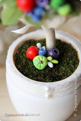 """Вкусное и полезное деревце """"Ягодный микс"""" ручной работы. Наконец-то воплотила его в реальность! На деревце растут зелененькие яблочки, морошка, ежевика, малина, брусника,черника, голубика, листья.   Высота дерева - 22 см. фото 3"""