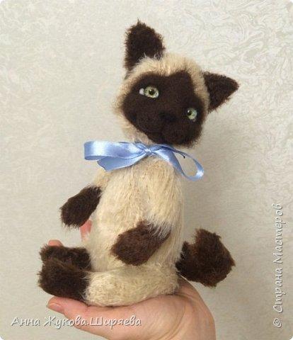Сиамский котик вязаный фото 4