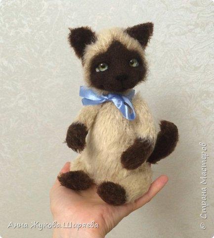 Сиамский котик вязаный фото 2