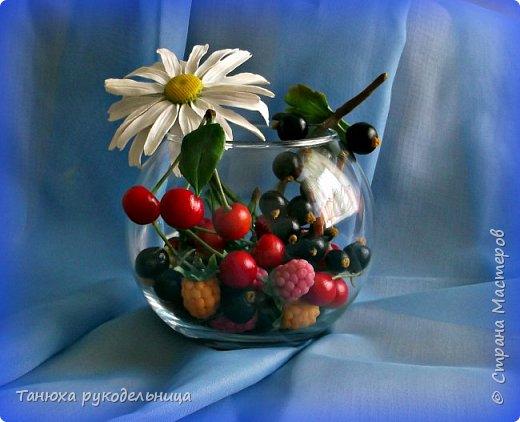 Привет всем! Я очень люблю лето за цветы, ягоды, грибы, ну и конечно же за тепло (хотя в этом году лето нас не балует теплом ).  Зато у меня поспели ягодки. А гусеница Маруська думает, что это все для нее. фото 2