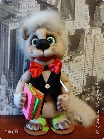 Кот музыкант.  фото 1