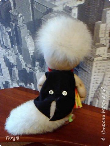 Кот музыкант.  фото 2
