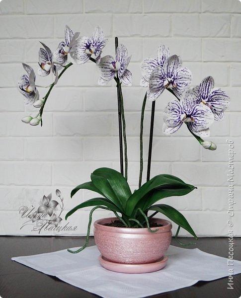 """Вот такая орхидейка """"зацвела"""" у меня на этот раз))) Пятнистый фаленопсис. Все из фоамирана и сопутствующих ему материалов. фото 3"""