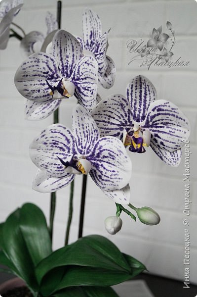 """Вот такая орхидейка """"зацвела"""" у меня на этот раз))) Пятнистый фаленопсис. Все из фоамирана и сопутствующих ему материалов. фото 4"""