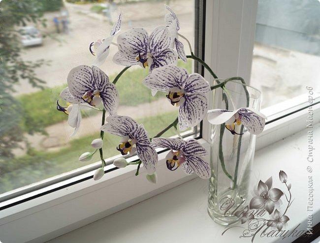 """Вот такая орхидейка """"зацвела"""" у меня на этот раз))) Пятнистый фаленопсис. Все из фоамирана и сопутствующих ему материалов. фото 2"""