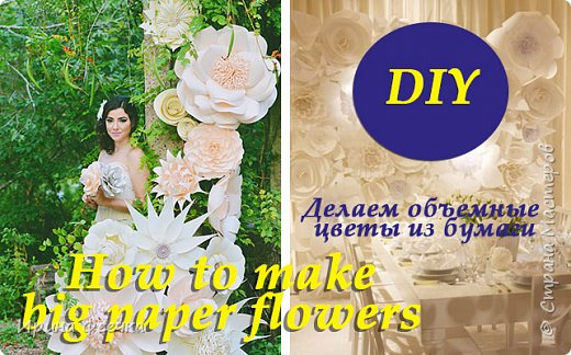 Большие бумажные цветы для оформления интерьера