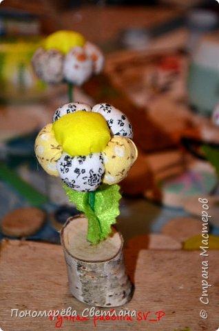 Вот такие цветочки я подготовила на беспроигрышную лотерею. фото 2