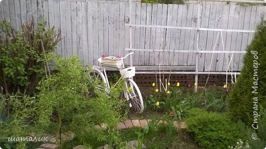 садовый велосипед фото 5