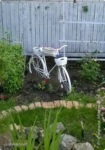 садовый велосипед фото 1