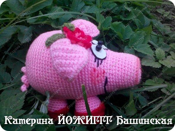 Мама свинка. фото 3
