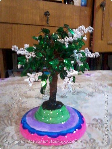 Дерево счастья. Черёмуха.