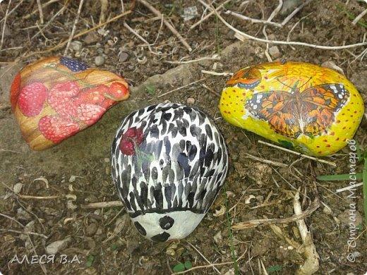 Такие вот хорошие камушки!!! Прям идеальные!! Не знаю, как надо правильно работать с камнем, на сначала покрыла грунтом, потом уже рисовала красками акриловыми, и уже сверху лак!! фото 4