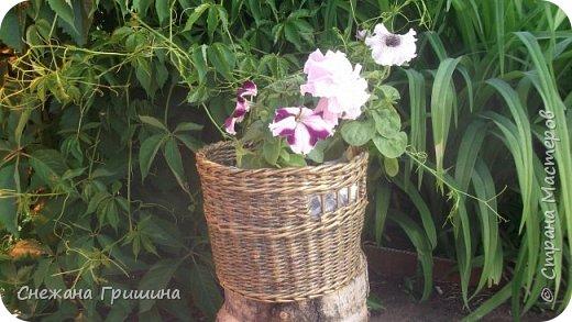 Здравствуйте дорогие жители Страны Мастеров! Лето и дачный сезон в разгаре!!! Я все пристраиваю свои цветочки в плетеные корзинки!! фото 1