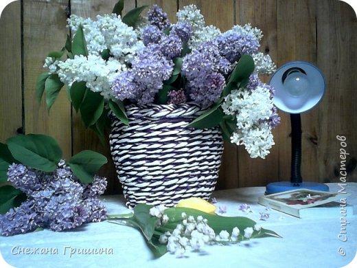 Здравствуйте дорогие жители Страны Мастеров! Лето и дачный сезон в разгаре!!! Я все пристраиваю свои цветочки в плетеные корзинки!! фото 7
