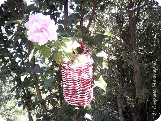 Здравствуйте дорогие жители Страны Мастеров! Лето и дачный сезон в разгаре!!! Я все пристраиваю свои цветочки в плетеные корзинки!! фото 5