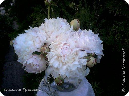 Здравствуйте дорогие жители Страны Мастеров! Лето и дачный сезон в разгаре!!! Я все пристраиваю свои цветочки в плетеные корзинки!! фото 10