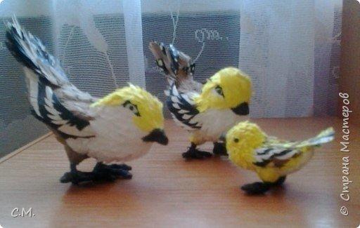 Пернатая парочка. Изделия выполнены из бумаги (основной материал). Птицы являются символом благополучия дома, придают особую атмосферу  уюта и тепла в жилище, вызывают неотемлемую волну позитива в наших сердцах. фото 3