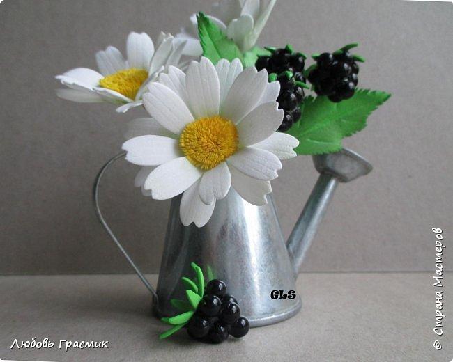 Ромашки, василек из фоамирана. Черника  фото 16